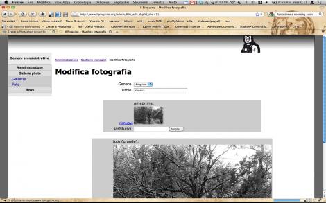 """Gruppo fotografico """"Il Pinguino"""" - Amministrazione"""